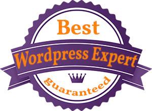 experto en wordpress